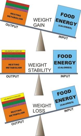 energy balance2