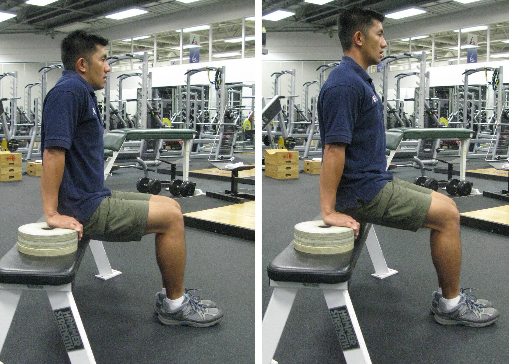 Sitting Shoulder Press Up